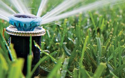 Greenhouse Nursery And Open Field Irrigation Hunter