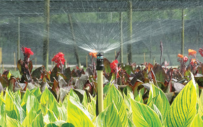 Greenhouse, Nursery, and Open-Field Irrigation | Hunter Industries