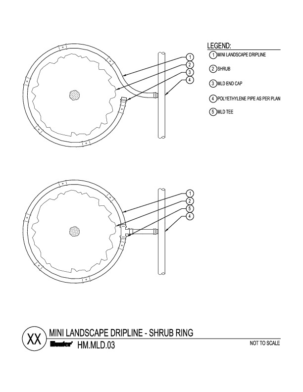 CAD - MLD Shrub Rings