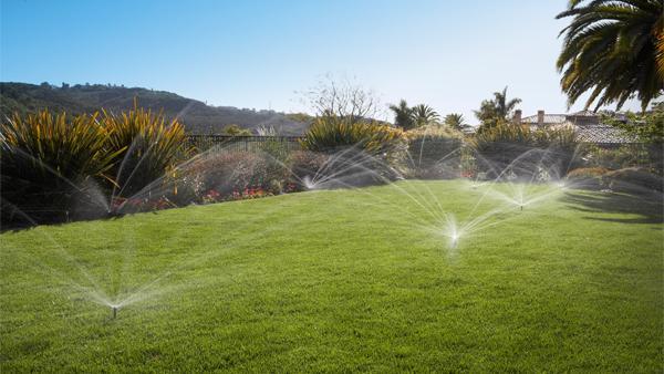 MP Rotator Saving Water on Lawn