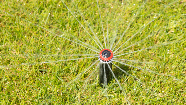 Save Water with MP Rotator High Efficiency Sprinkler