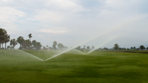 Galveston Golf Course Sprinklers