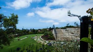 La Jolla Backyard with Sprinklers