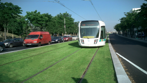 Rail Track with Grass