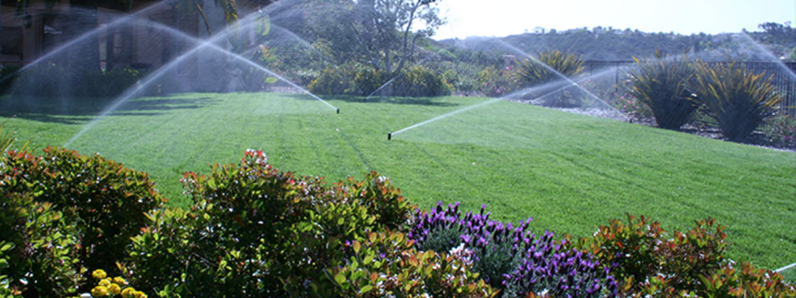 Sprinklers Running on Lawn