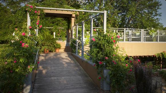 PLD at Public Garden
