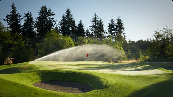 Sprinkler Running on Golf Green