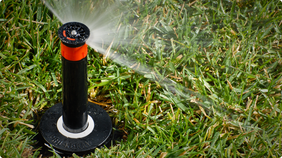 Pro-Spray Sprinkler on Lawn