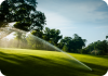 G75B Golf Sprinkler Head on Golf Course
