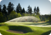 Sprinkler Running on Golf Green
