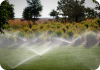 PS Ultra Spray Sprinkler Heads for Landscapes