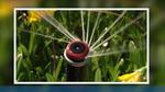 MP Rotator Ürün Rehberi: Modeller ve Atış Mesafeleri