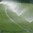 Spray Sprinklers Running on Turf
