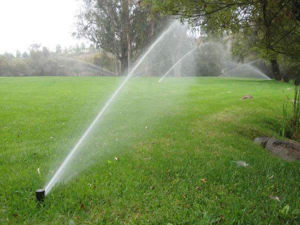 How Often Should I Run My Sprinkler System This Summer